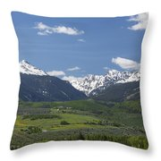 Mountains Co Grouse - New York 2 Throw Pillow