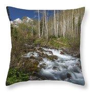 Mountains Co Maroon Creek 4 Throw Pillow