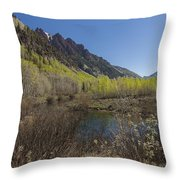 Mountains Co Sievers 3 Throw Pillow