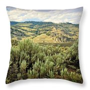 Mountains North Of The Lamar Throw Pillow
