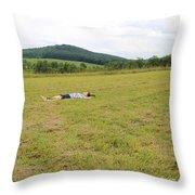 Mountaintop Dome Rw2k14 Throw Pillow