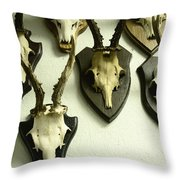 Mounted Throw Pillow