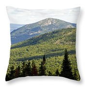 Mountian Draw Throw Pillow
