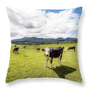 Mourne Cows Throw Pillow