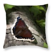 Mourning Cloak Butterfly Throw Pillow