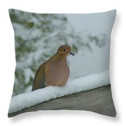 Mourning Dove After The Snowfall Throw Pillow