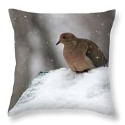 Mourning Dove In Snow Throw Pillow