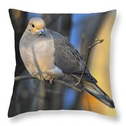 Mourning Dove On Limb Throw Pillow