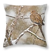 Mourning Dove Pictures 68 Throw Pillow