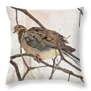 Mourning Dove - Sing No Sad Song For Me #2 Throw Pillow