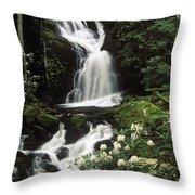 Mouse Creek Falls - Fs000675 Throw Pillow