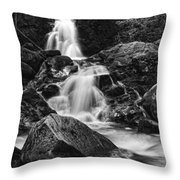 Mouse Creek Falls Throw Pillow