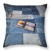 Mouse Trap With Cheese. Throw Pillow