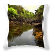 Mouth Of The Brook - Calm - Shallow Water Throw Pillow