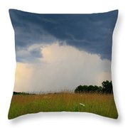 Mouth Of The Storm Throw Pillow