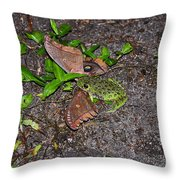 Mouthful Of Moth Throw Pillow
