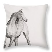 Moving Image Throw Pillow