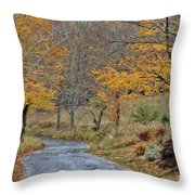Moving On Down The Road Throw Pillow