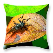 Mr. Big Eyes Throw Pillow