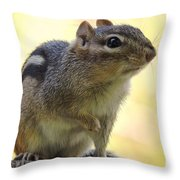 Mr. Chips Throw Pillow