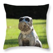 Mr Cool Throw Pillow