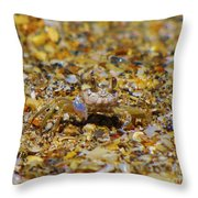 Mr. Crabby Throw Pillow