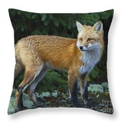 Mr. Fairy Tale.. Throw Pillow