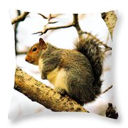 Mr Fat And Sassy Throw Pillow