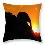 Mr Gobbles At Sunset Throw Pillow