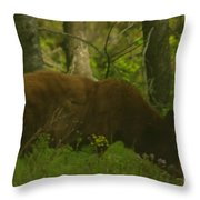 Mr Hungry Throw Pillow