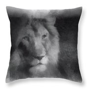 Mr Lion Photo Art 01 Throw Pillow