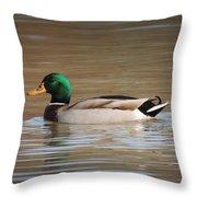 Mr. Mallard Throw Pillow