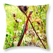 Mr Mantis Throw Pillow