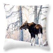 Mr. Moose Throw Pillow