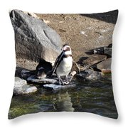 Mr Popper's Penguins Throw Pillow by Bill Cannon