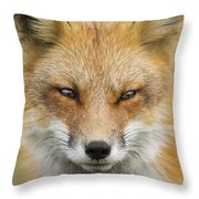 Mr Red Portrait Throw Pillow