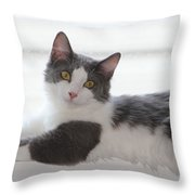 Mr. Scarlow Throw Pillow