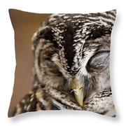 Mr Sleepyhead Throw Pillow