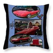 Mr. Sox Corvette Throw Pillow