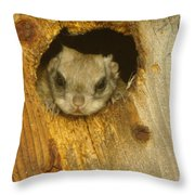 Mr Squirrel Answers The Door  Throw Pillow