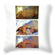 Mr. Tortoise Vertical Triptych Throw Pillow
