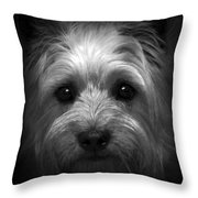 Mr. Watson Throw Pillow