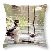 Mr. Wood Duck And Friends Throw Pillow