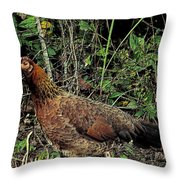 Ms. Chicken Throw Pillow