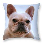 French Bulldog Seriously Throw Pillow