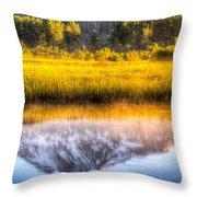 Mt Adams Reflection Throw Pillow