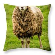 Mt Angel Abbey Sheep - Oregon Throw Pillow