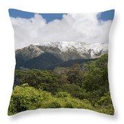 Mt. Aspiring National Park Mountains Throw Pillow