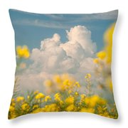 Mt Cloud Throw Pillow by Davorin Mance