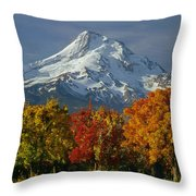 1m5117-mt. Hood In Autumn Throw Pillow